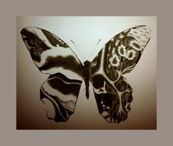 vlinder.S
