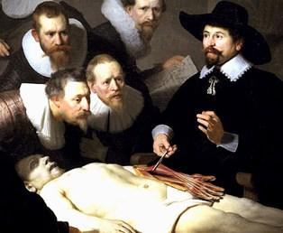 De Anatomische Les S
